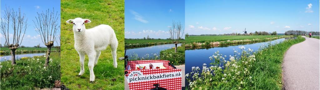 de routes voeren langs de mooiste picknickplekken